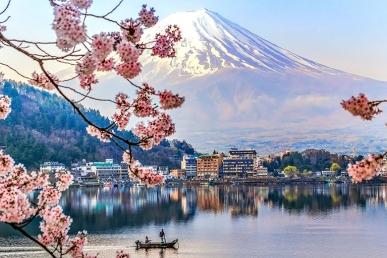 Nauja programa jaunimui - Working Holiday Japan!