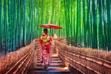 japan-kyoto-wald-frau-kimono-traditionell_4229-4e8405242f61fd0e8b0d29122c6540c5.jpg